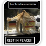 Paul the octopus mati??