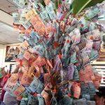 Pokok duit, kaya woo