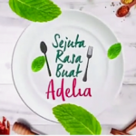 Tonton online sejuta Rasa buat Adelia episod 12