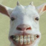 Tips penjagaan gigi