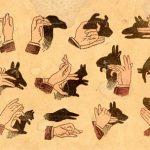 Bayang-bayang tangan yang menarik