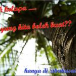 Boleh buat apa dengan pokok kelapa nie?
