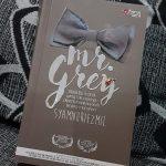 Sinopsis drama Mr Grey, astro